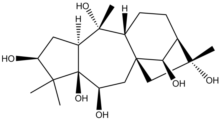 Structure of grayanotoxin I, one of the compounds found in Kalmia angustifolia.